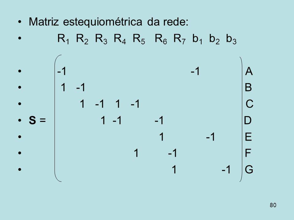 Matriz estequiométrica da rede: