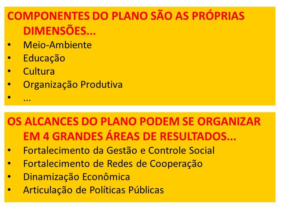 COMPONENTES DO PLANO SÃO AS PRÓPRIAS DIMENSÕES...