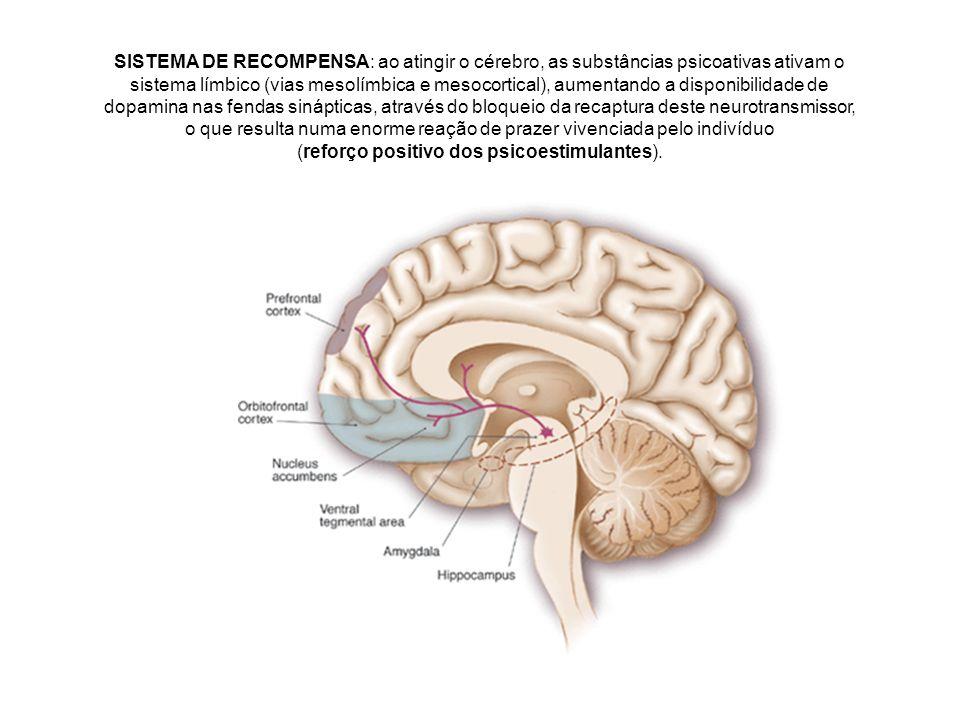 SISTEMA DE RECOMPENSA: ao atingir o cérebro, as substâncias psicoativas ativam o sistema límbico (vias mesolímbica e mesocortical), aumentando a disponibilidade de dopamina nas fendas sinápticas, através do bloqueio da recaptura deste neurotransmissor, o que resulta numa enorme reação de prazer vivenciada pelo indivíduo (reforço positivo dos psicoestimulantes).