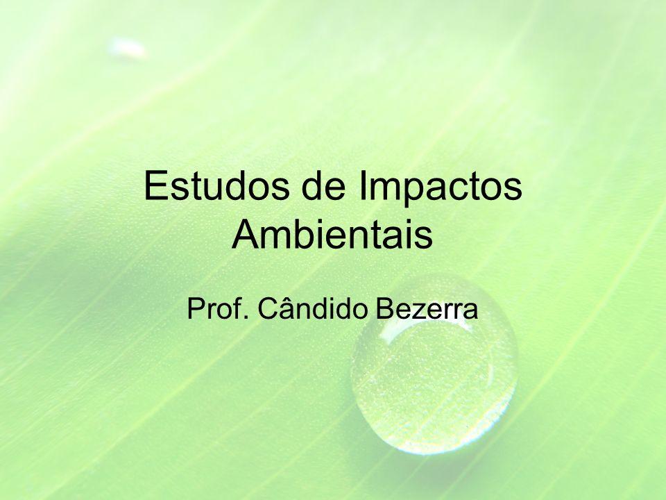 Estudos de Impactos Ambientais