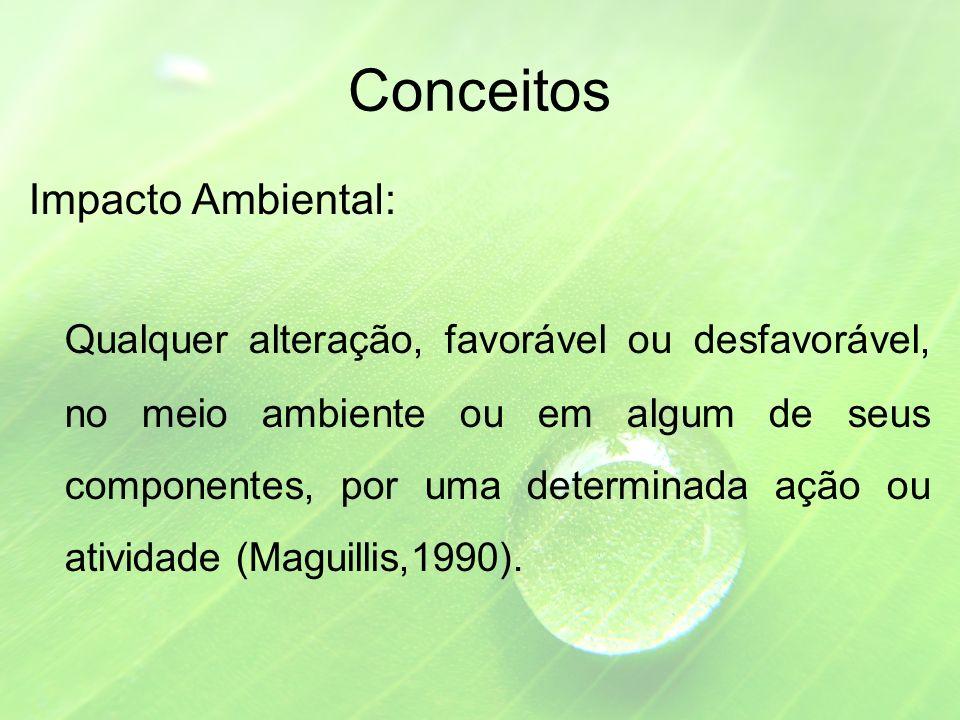 Conceitos Impacto Ambiental: