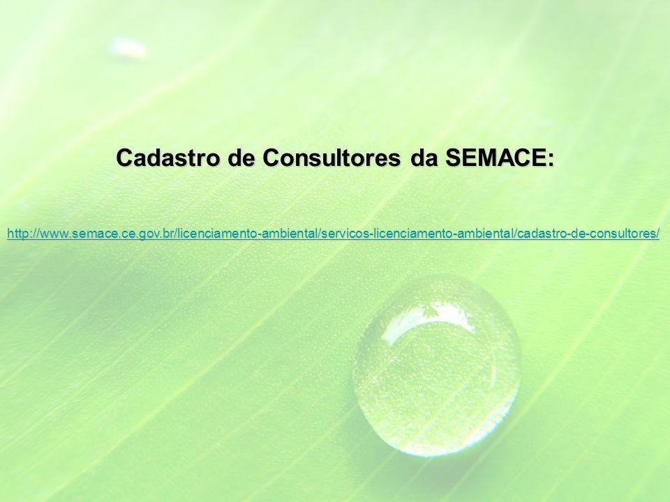 Cadastro de Consultores da SEMACE: