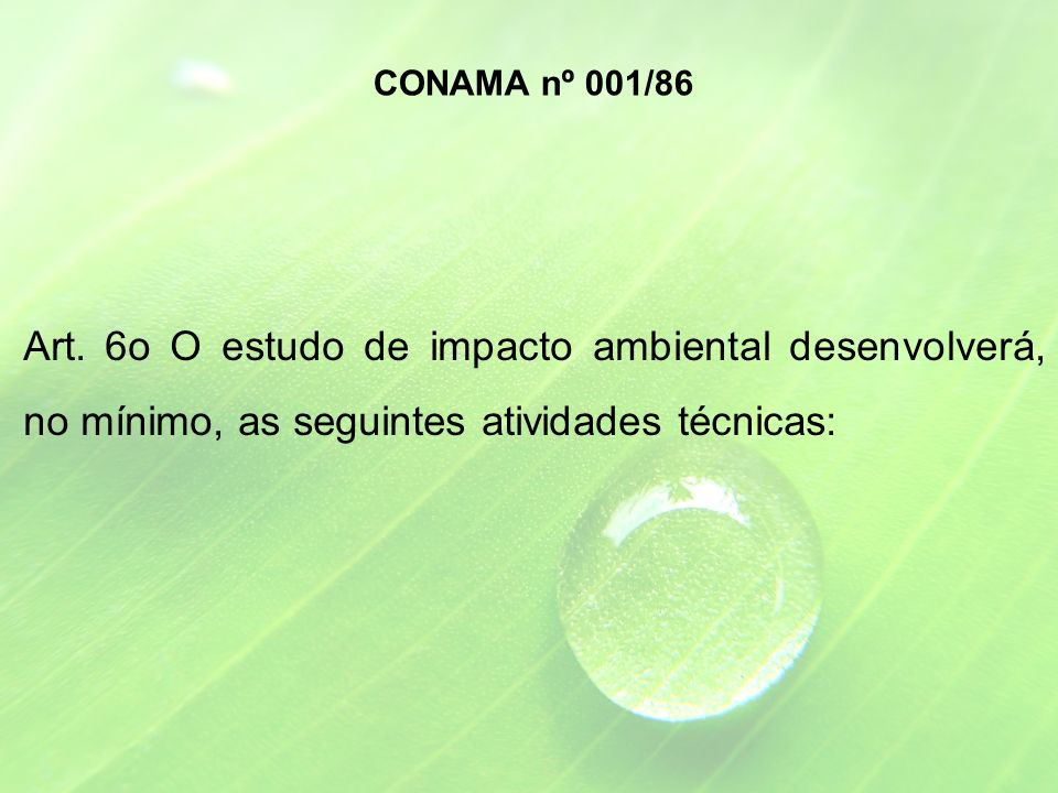 CONAMA nº 001/86 Art.