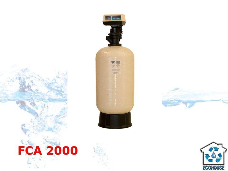 FCA 2000