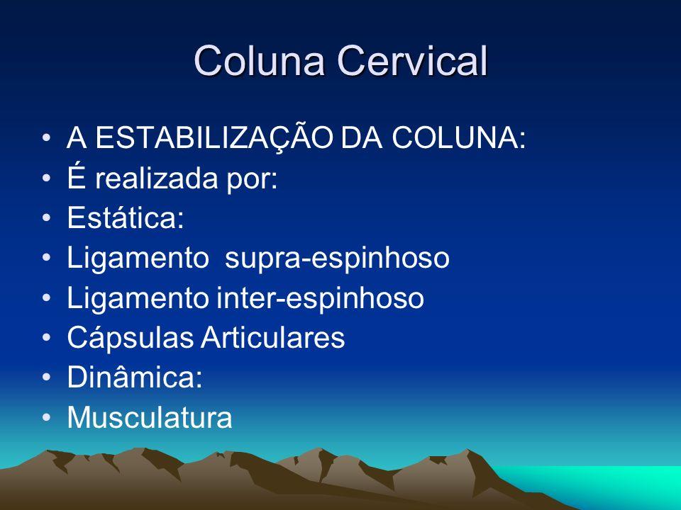 Coluna Cervical A ESTABILIZAÇÃO DA COLUNA: É realizada por: Estática: