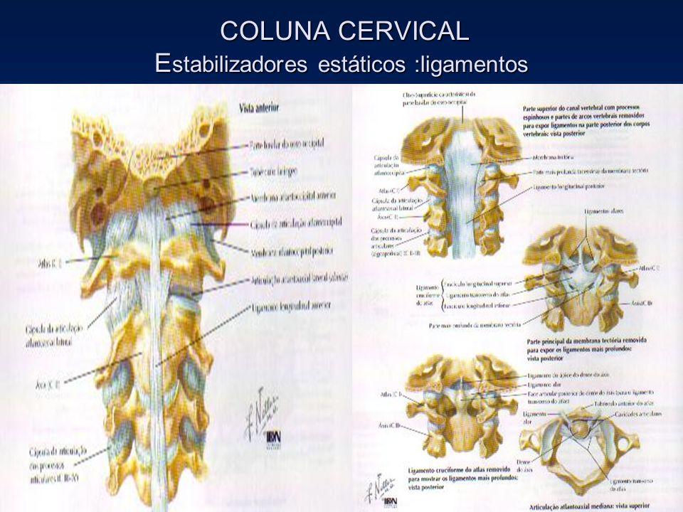 COLUNA CERVICAL Estabilizadores estáticos :ligamentos