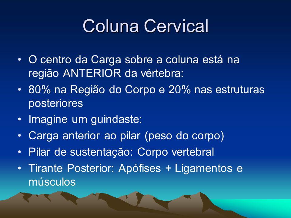 Coluna Cervical O centro da Carga sobre a coluna está na região ANTERIOR da vértebra: 80% na Região do Corpo e 20% nas estruturas posteriores.