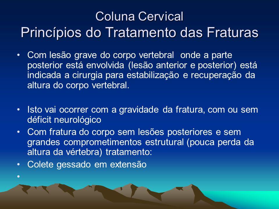 Coluna Cervical Princípios do Tratamento das Fraturas