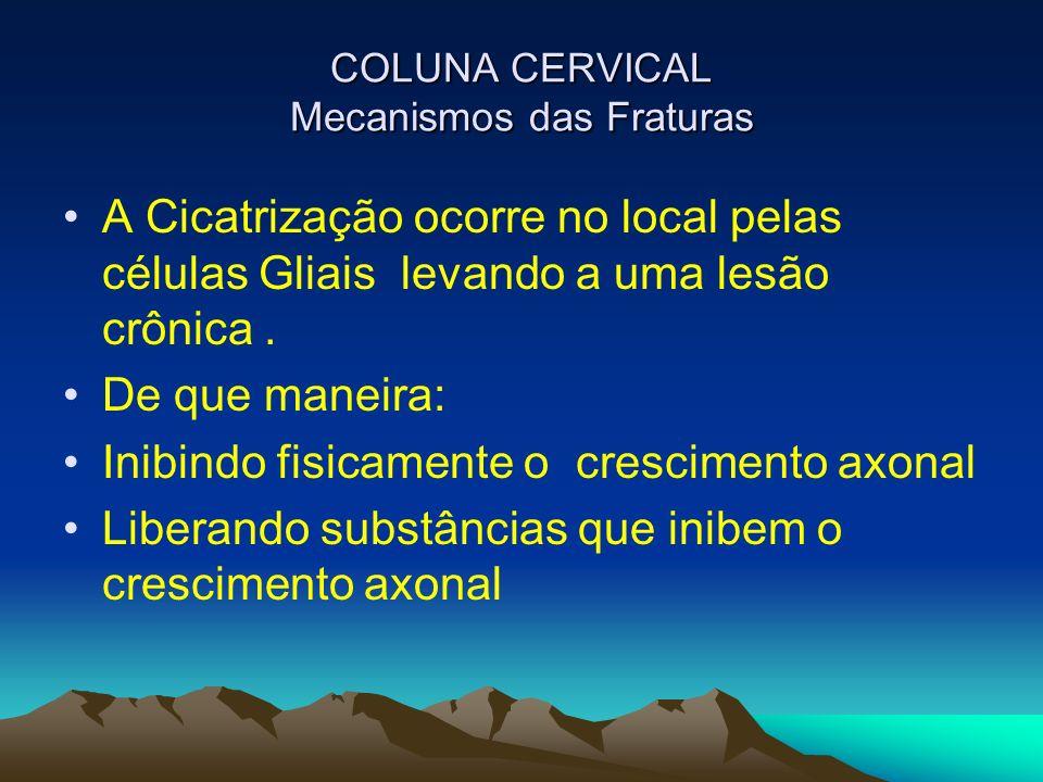 COLUNA CERVICAL Mecanismos das Fraturas