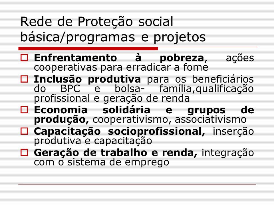 Rede de Proteção social básica/programas e projetos