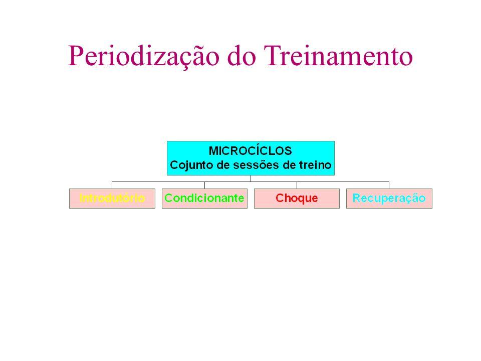 Periodização do Treinamento