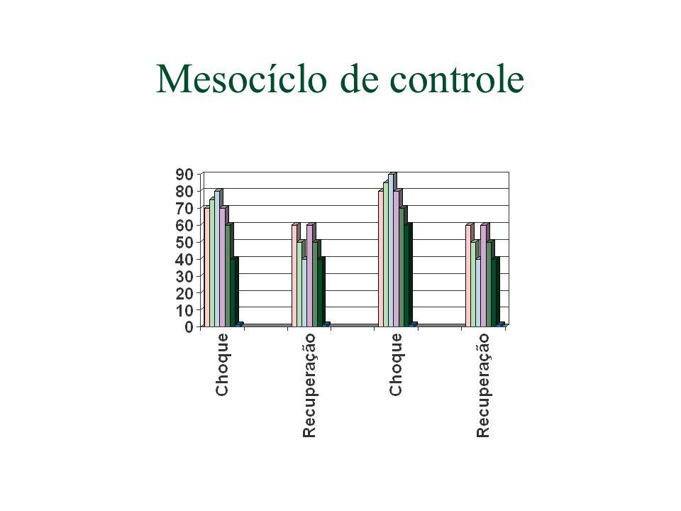 Mesocíclo de controle