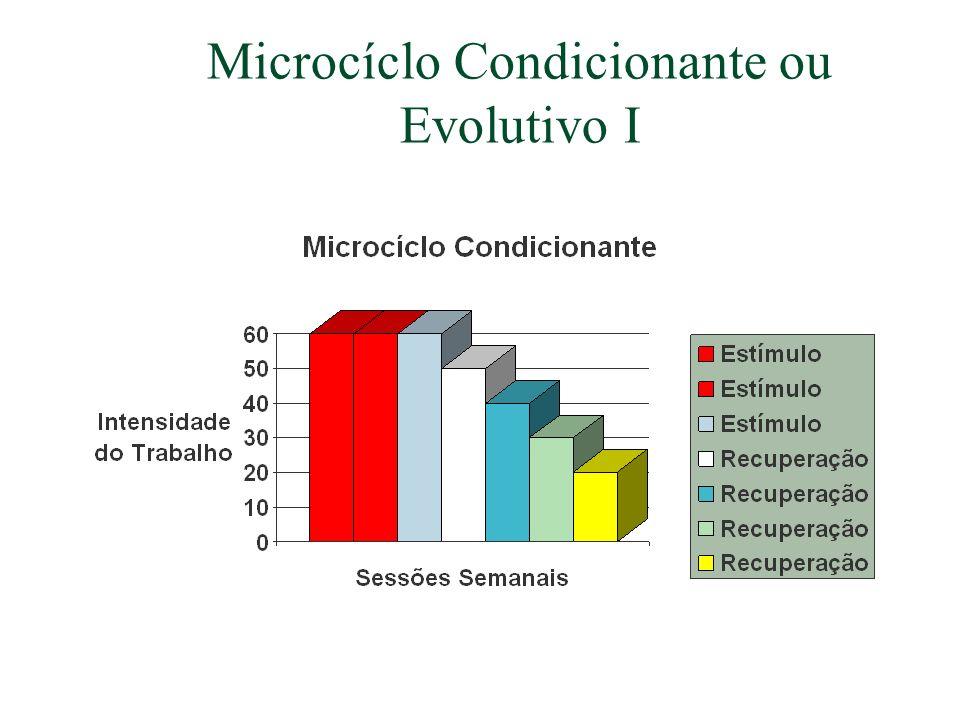Microcíclo Condicionante ou Evolutivo I