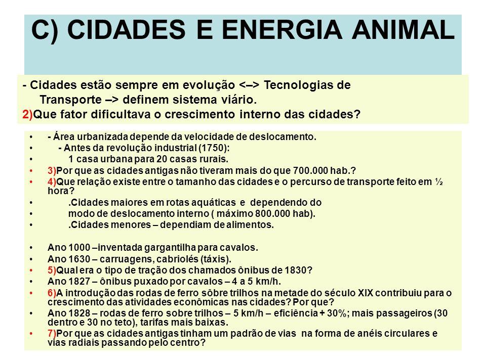 C) CIDADES E ENERGIA ANIMAL