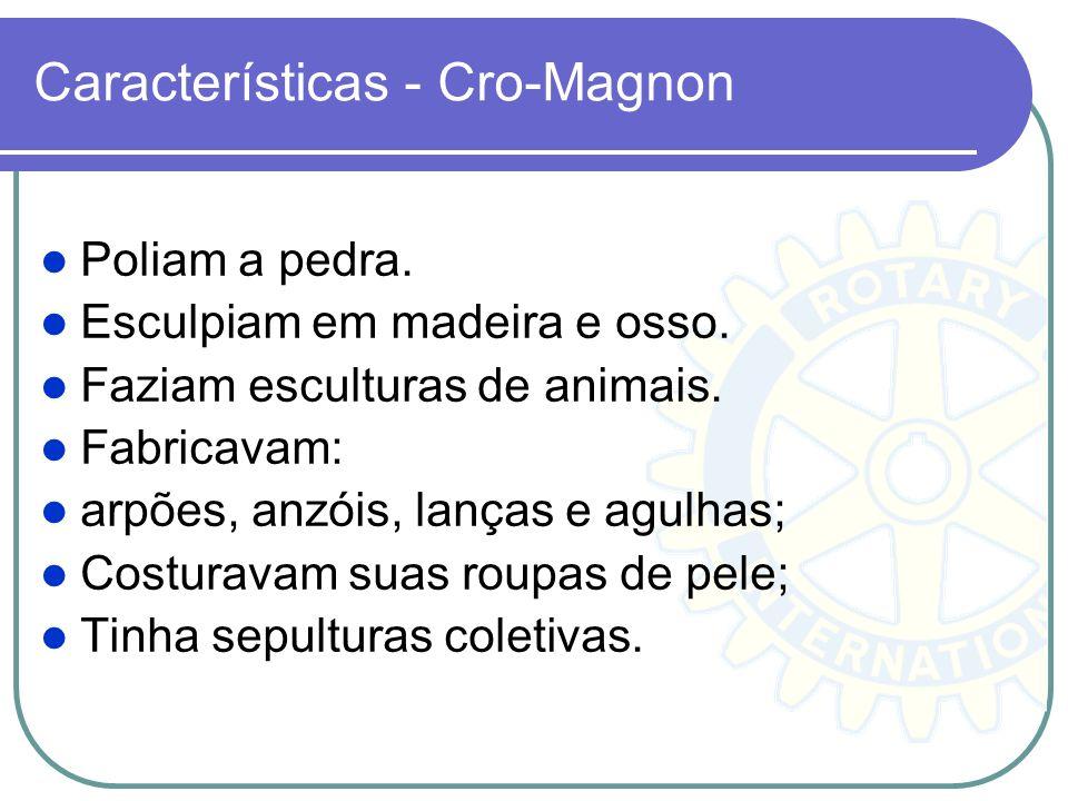 Características - Cro-Magnon