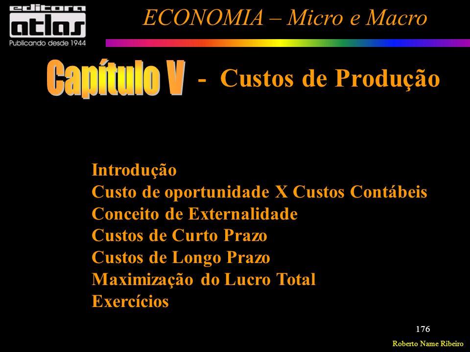 Capítulo V - Custos de Produção Introdução