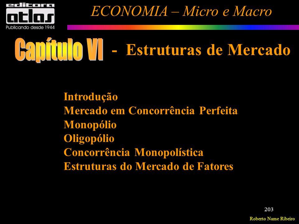 Capítulo VI - Estruturas de Mercado Introdução