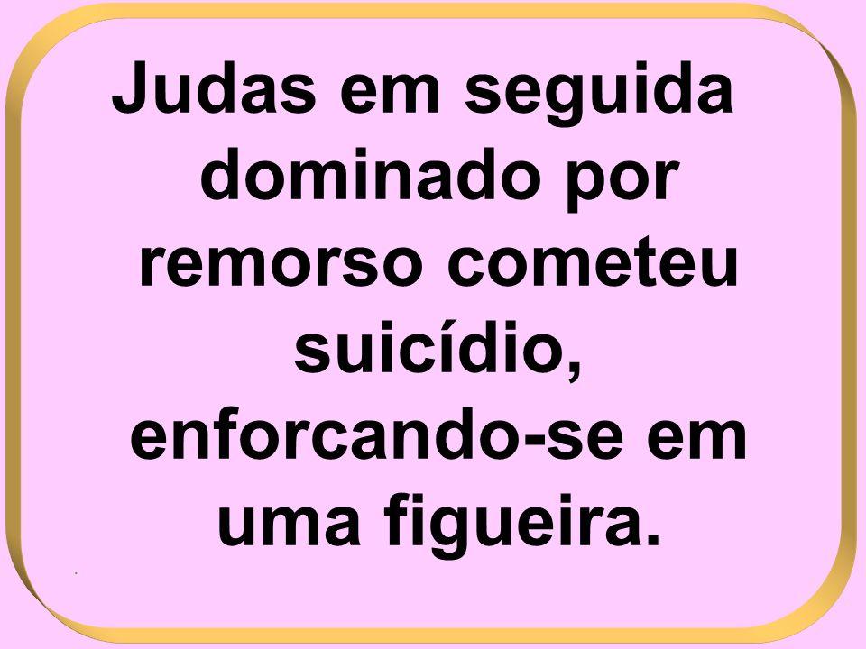 Judas em seguida dominado por remorso cometeu suicídio, enforcando-se em uma figueira. .