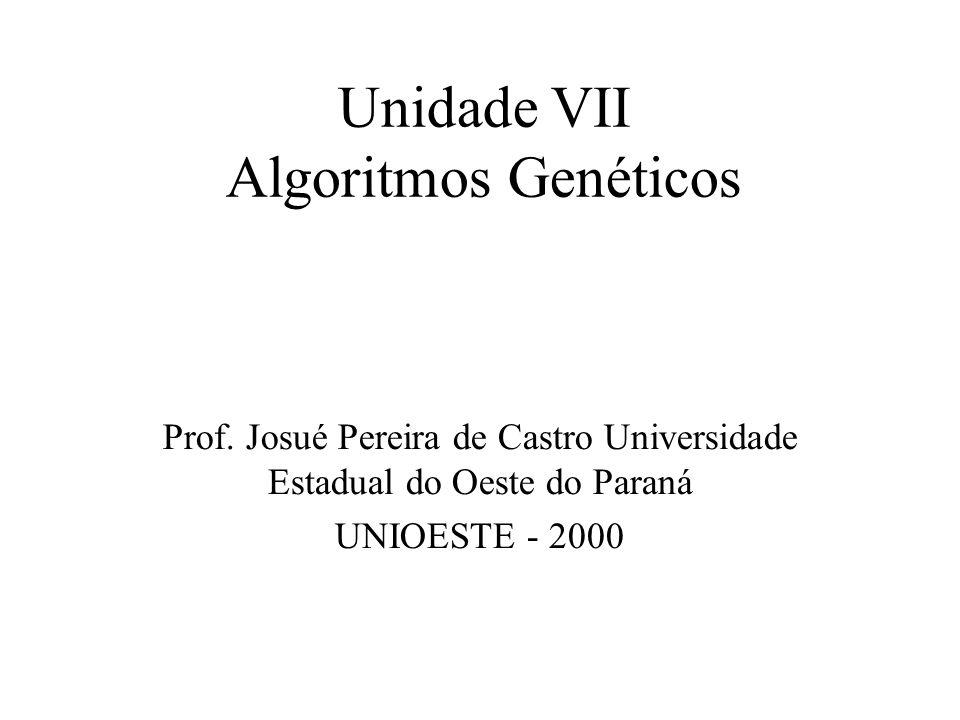Unidade VII Algoritmos Genéticos
