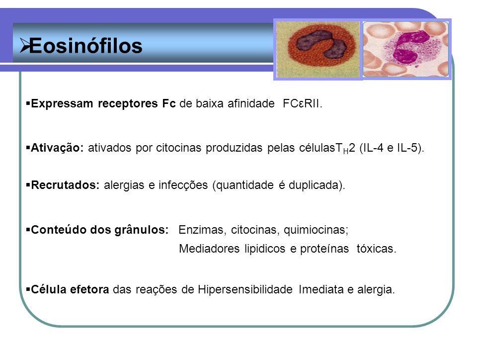 Eosinófilos Expressam receptores Fc de baixa afinidade FCεRII.