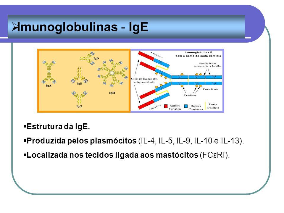 Imunoglobulinas - IgE Estrutura da IgE.