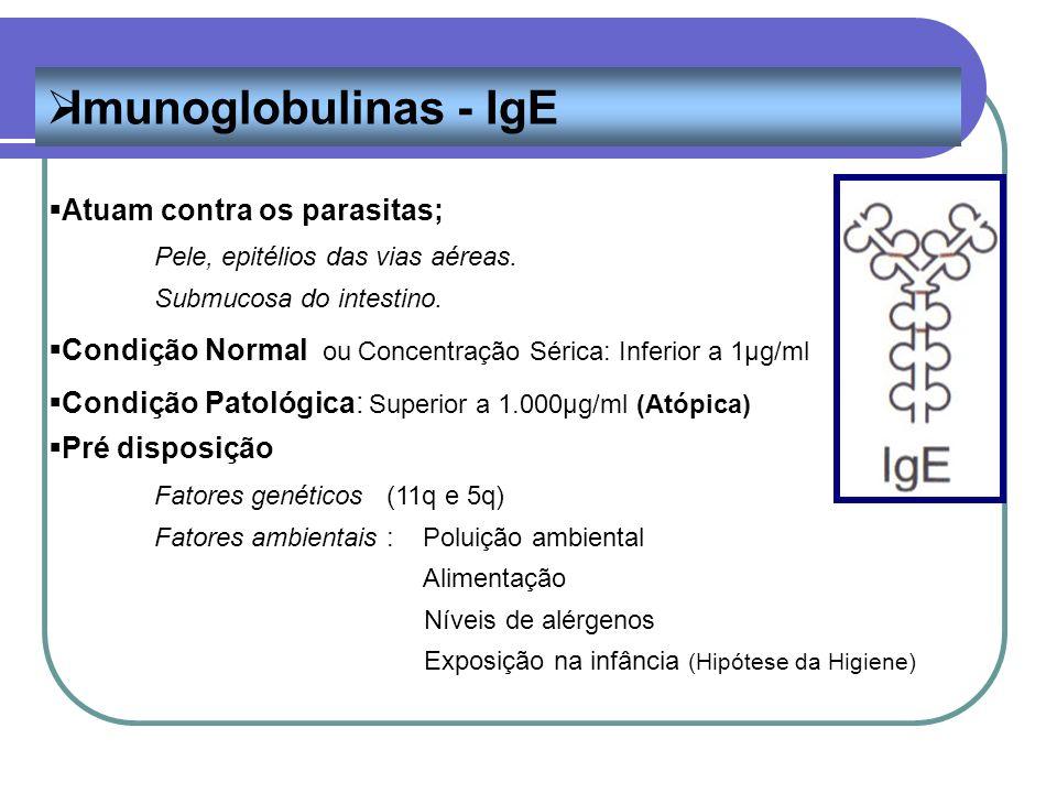 Imunoglobulinas - IgE Atuam contra os parasitas;