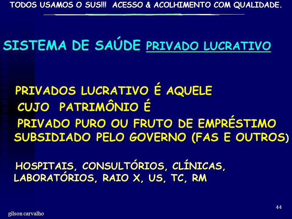 SISTEMA DE SAÚDE PRIVADO LUCRATIVO