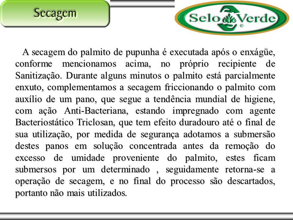 A secagem do palmito de pupunha é executada após o enxágüe, conforme mencionamos acima, no próprio recipiente de Sanitização.