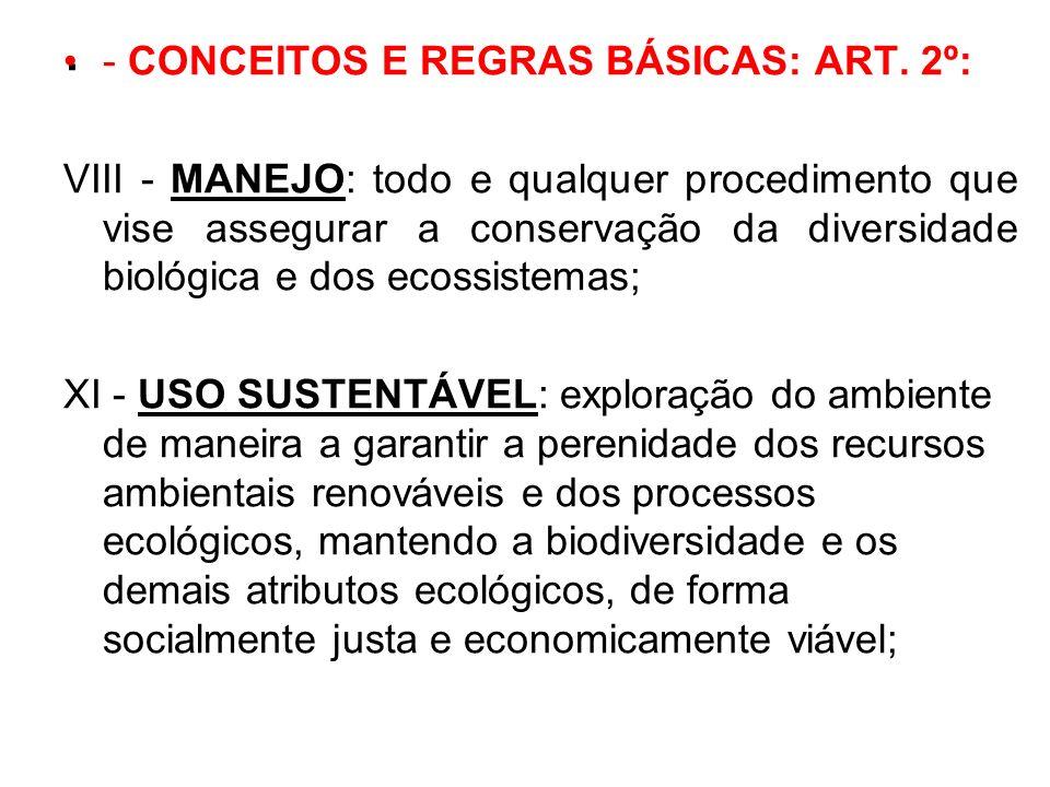 . - CONCEITOS E REGRAS BÁSICAS: ART. 2º: