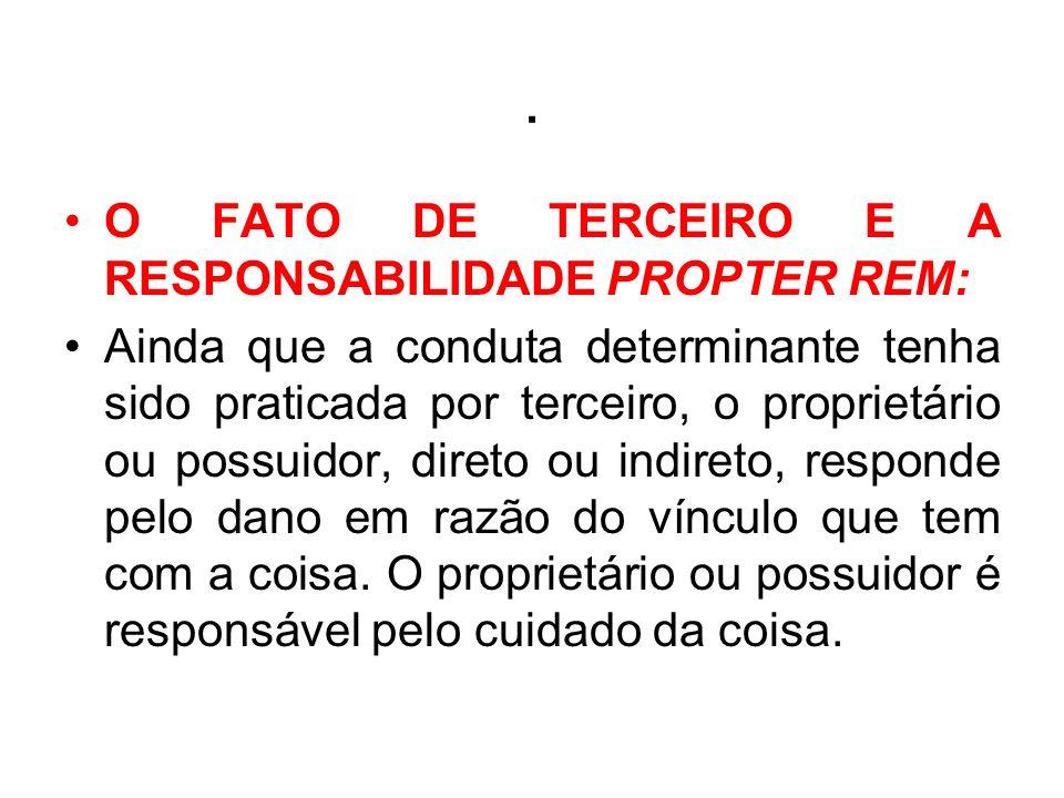 . O FATO DE TERCEIRO E A RESPONSABILIDADE PROPTER REM: