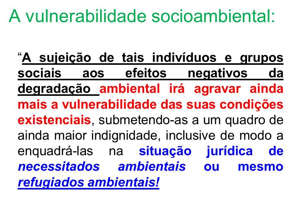 A vulnerabilidade socioambiental: