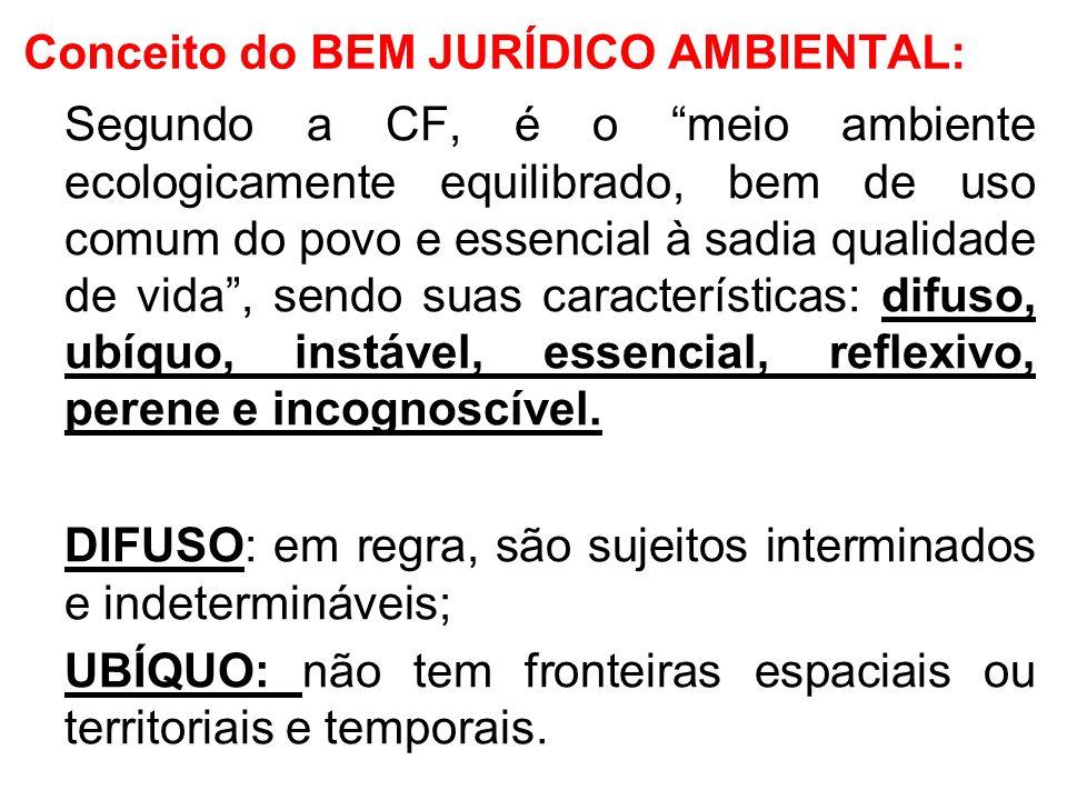 Conceito do BEM JURÍDICO AMBIENTAL: