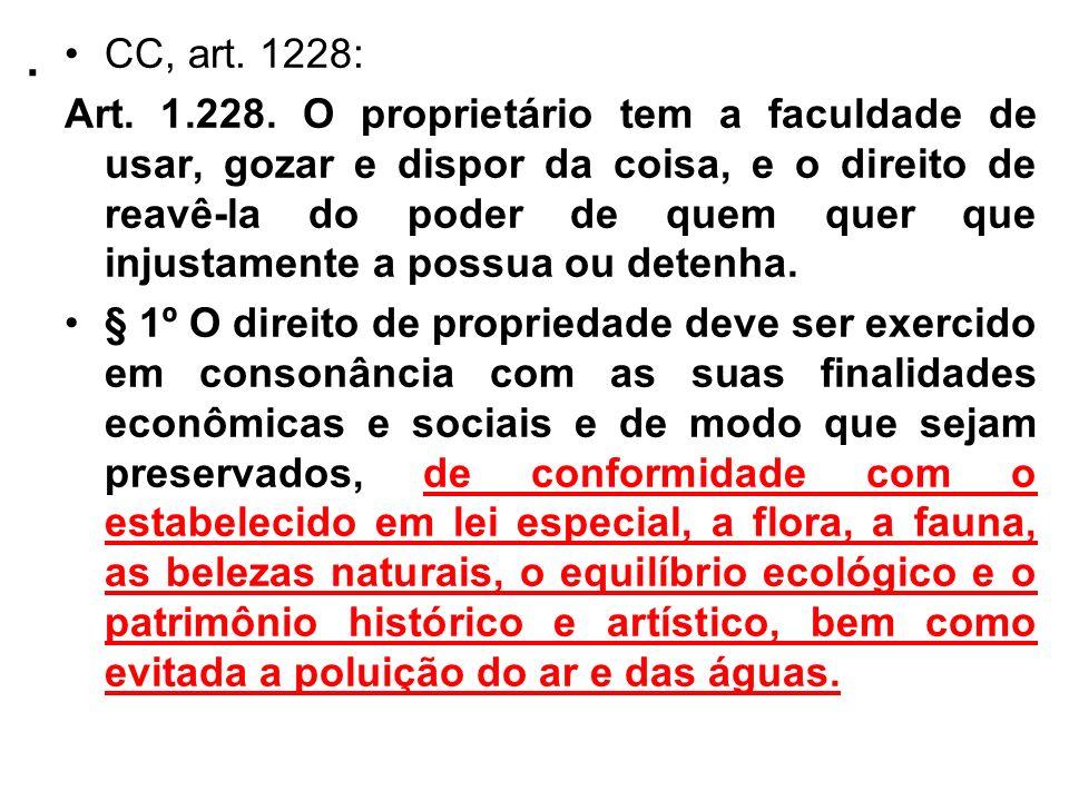. CC, art. 1228: