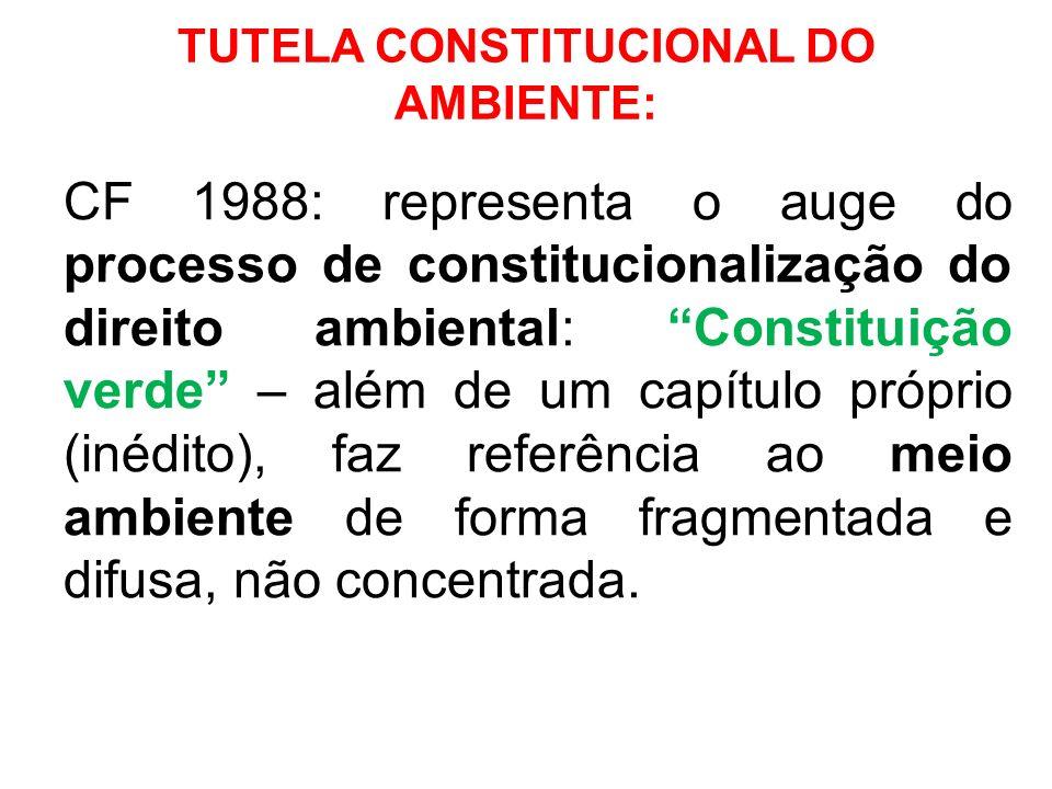 TUTELA CONSTITUCIONAL DO AMBIENTE: