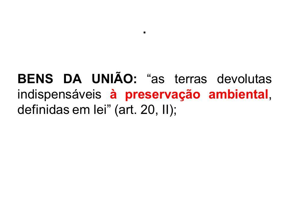 BENS DA UNIÃO: as terras devolutas indispensáveis à preservação ambiental, definidas em lei (art.