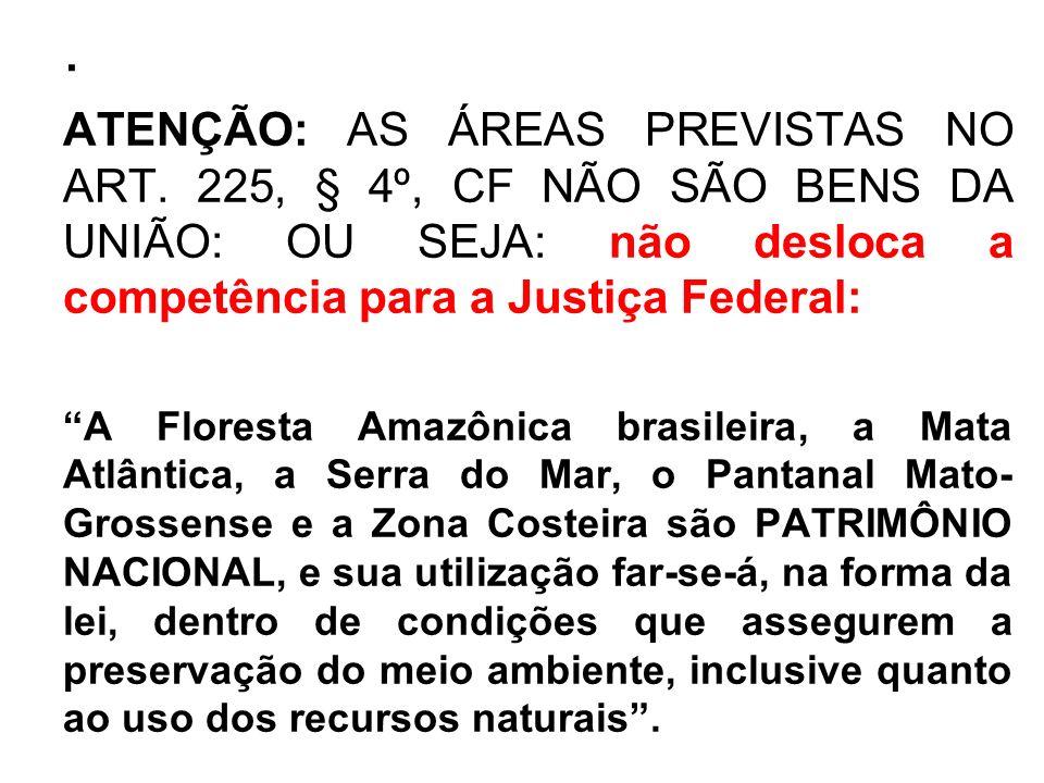 .ATENÇÃO: AS ÁREAS PREVISTAS NO ART. 225, § 4º, CF NÃO SÃO BENS DA UNIÃO: OU SEJA: não desloca a competência para a Justiça Federal: