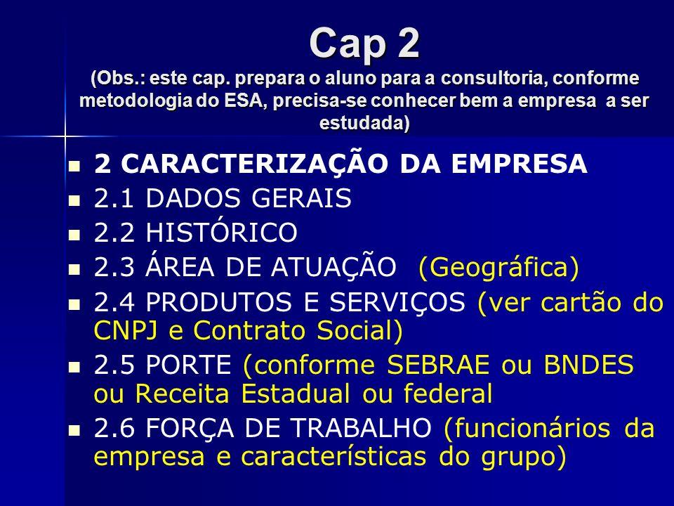 Cap 2 (Obs.: este cap. prepara o aluno para a consultoria, conforme metodologia do ESA, precisa-se conhecer bem a empresa a ser estudada)