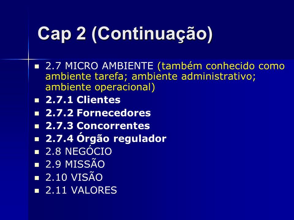 Cap 2 (Continuação) 2.7 MICRO AMBIENTE (também conhecido como ambiente tarefa; ambiente administrativo; ambiente operacional)