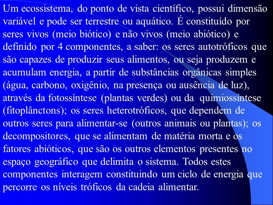 Um ecossistema, do ponto de vista científico, possui dimensão variável e pode ser terrestre ou aquático.