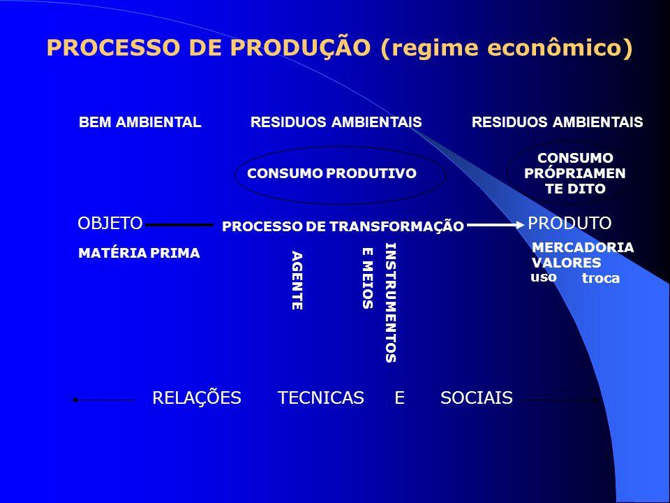 PROCESSO DE PRODUÇÃO (regime econômico)