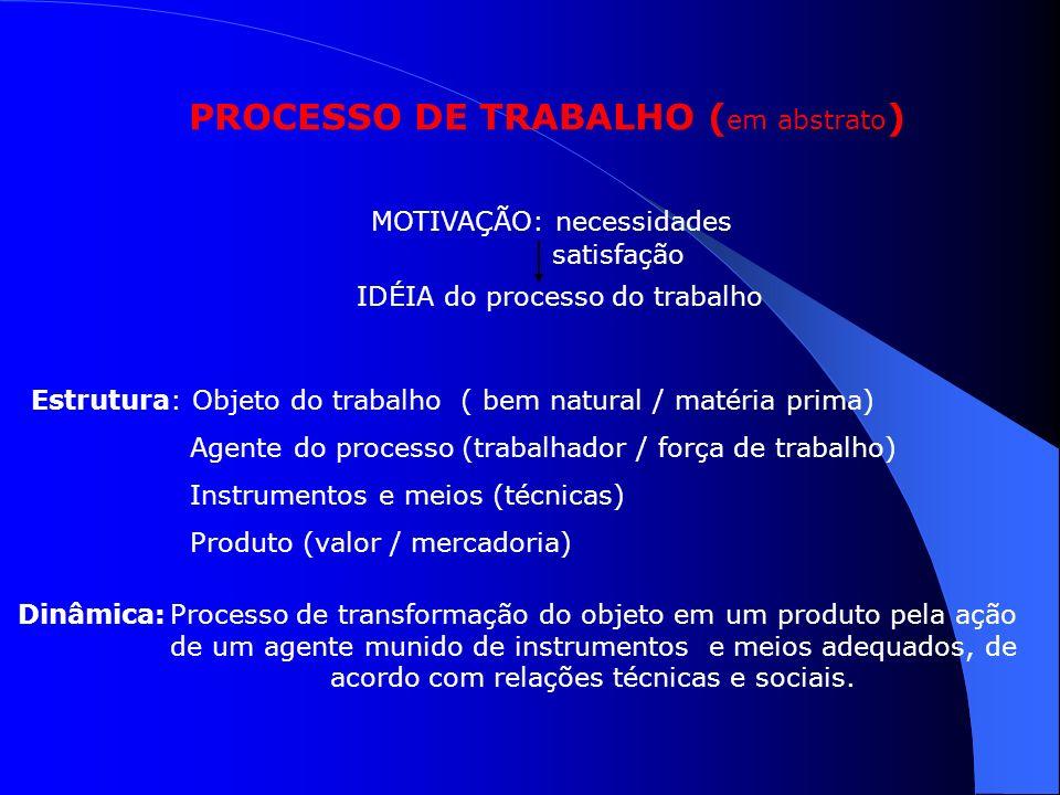 PROCESSO DE TRABALHO (em abstrato)