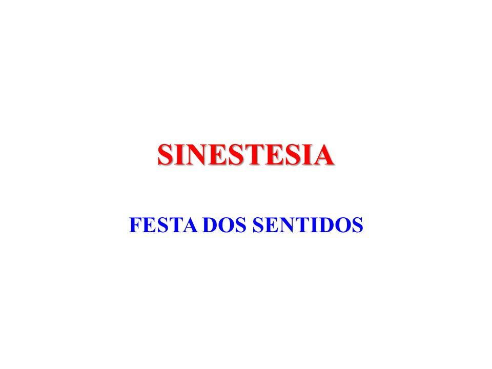 SINESTESIA FESTA DOS SENTIDOS