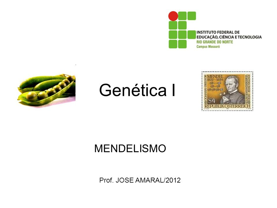 Genética I MENDELISMO Prof. JOSE AMARAL/2012