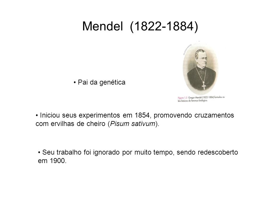 Mendel (1822-1884) Pai da genética
