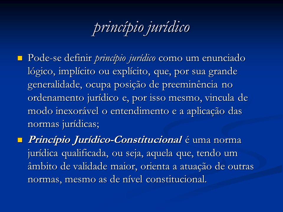 princípio jurídico