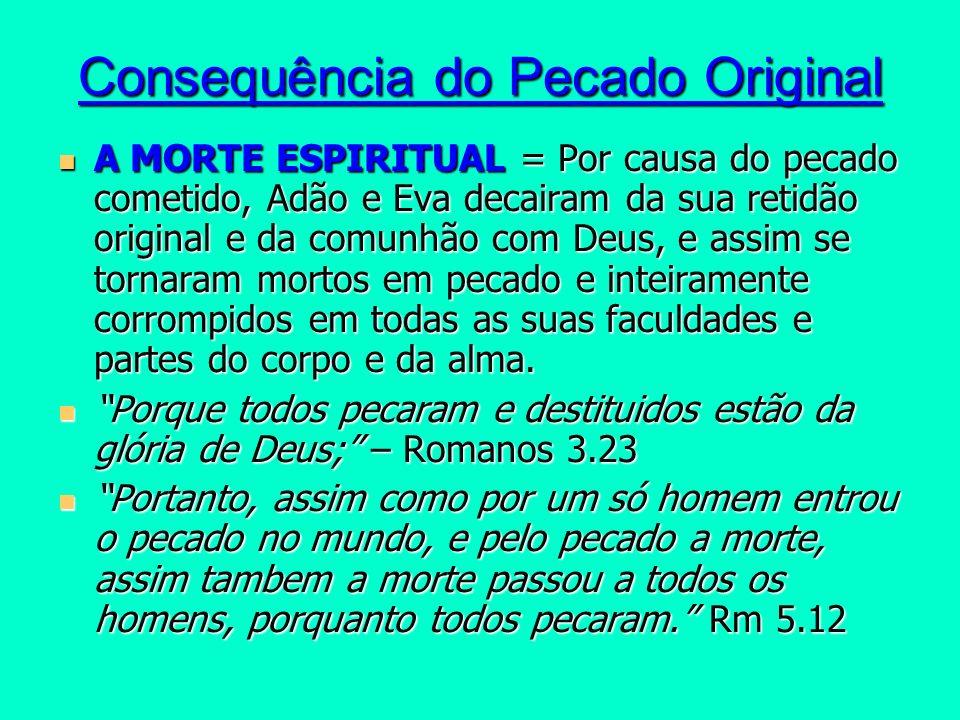 Consequência do Pecado Original