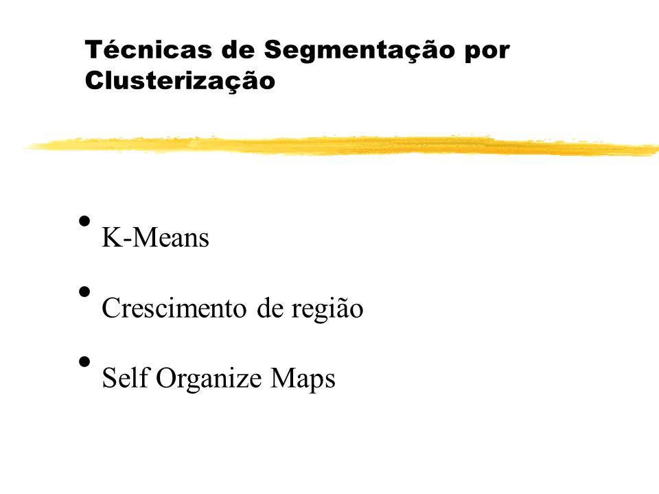 Técnicas de Segmentação por Clusterização