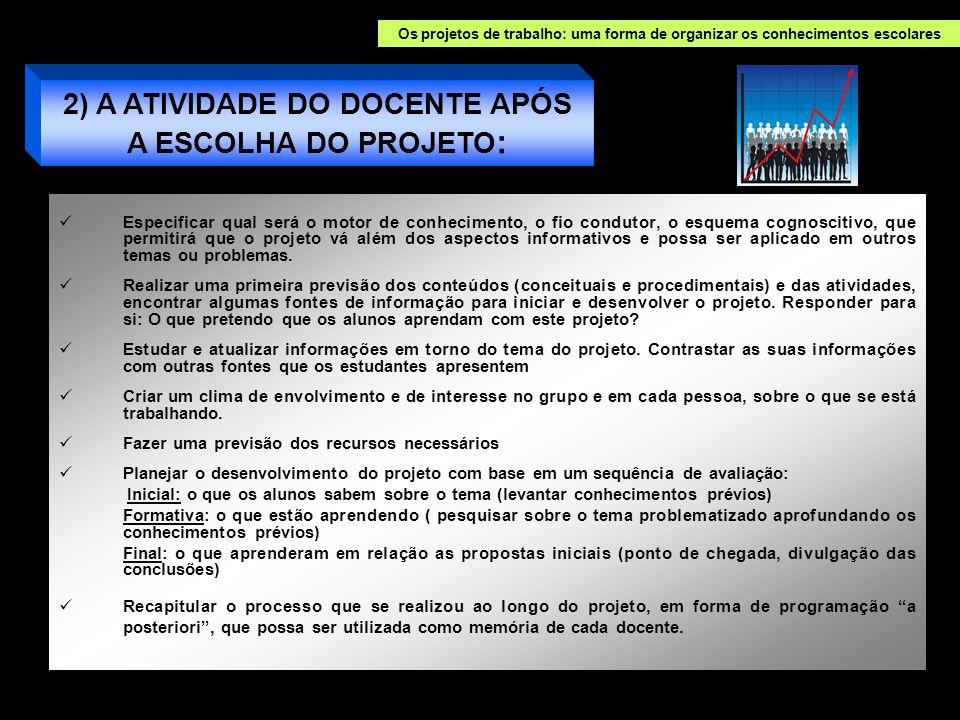 2) A ATIVIDADE DO DOCENTE APÓS A ESCOLHA DO PROJETO: