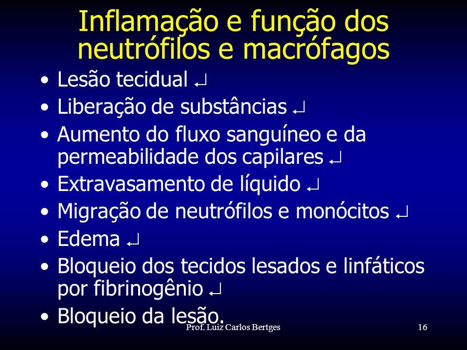 Inflamação e função dos neutrófilos e macrófagos