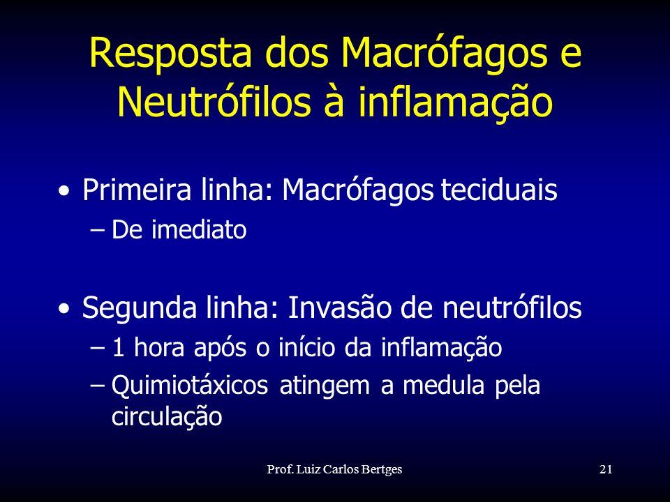 Resposta dos Macrófagos e Neutrófilos à inflamação